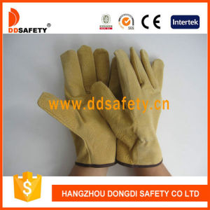 Ddsafety 2017 Pig Split Leather Glove pictures & photos