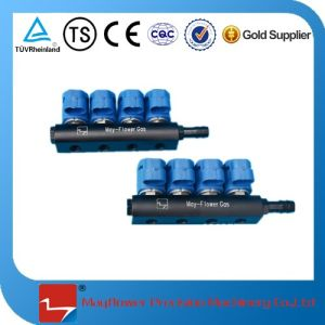 CNG Rail Fuel Injector pictures & photos