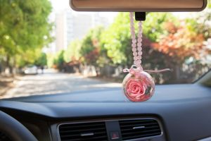 Ivenran Preserved Fresh Flower for Car Decoration pictures & photos