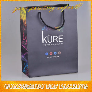 Custom Printing Shopping Paper Gift Bag (BLF-PB002) pictures & photos