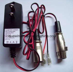 12V 0.5A Smart Charger for Lead-Acid Battery pictures & photos
