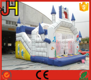 Inflatable Bouncer, Inflatable Castle Combo, Inflatable Bouncer House pictures & photos