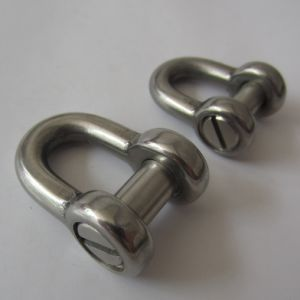 Stainless Steel Flush Slotted Pin Dee Shackle pictures & photos