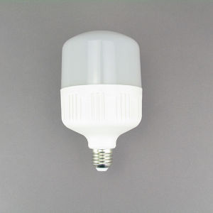 LED Global Bulbs LED Light Bulb 18W Lgl3108 SKD pictures & photos