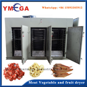Hot Air Tray Type Automatic Fruit and Vegetable Dryer pictures & photos