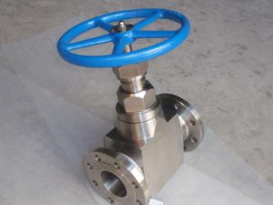 Pressure Seal Forged Globe Valve pictures & photos