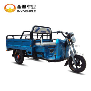 48V/60V Electric Cargo Tricycle with Big Power pictures & photos