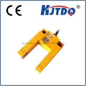 Photoelectric Sensor U Type Switch Best Saler pictures & photos