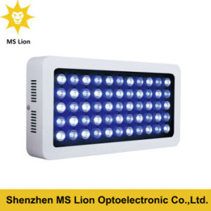 Dimming 120W Blue White LED Aquarium Light for Reef Lighting pictures & photos