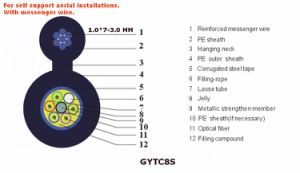 2 Core Single Mode Fiber Optic Cable Gytc8s pictures & photos