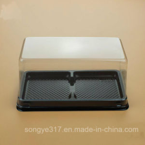 Transparent Square Cake Blister Box pictures & photos