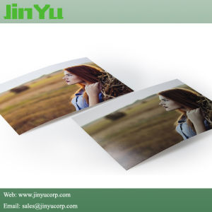 10mil Matte Microporous Wide Format Print Photo Paper pictures & photos