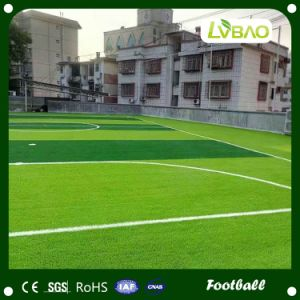 Professional Football Grass with Good Quality and Price pictures & photos