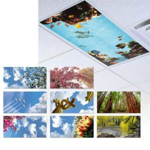 Ultra Thin 40W Flat Ceiling Light Scenery Picture LED Panel for Home Decorate pictures & photos