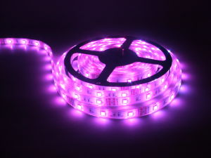 IP67 Waterproof Silicon Tube Double Side Rope Light 3528 240LED/M LED Strip Light pictures & photos
