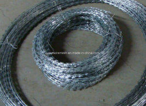Bto-22 Galvanized Razor Wire, Cbt-65 Razor Wire pictures & photos
