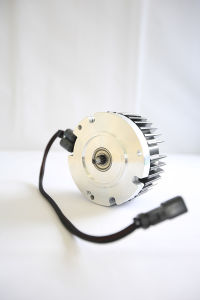 Electric DC Motor Escooter