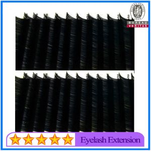 Factory Price High Quality Real Mink Eyelashes with 0.25mm pictures & photos