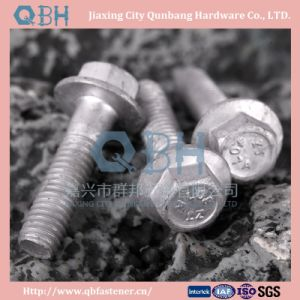 Hexagon Head Flange Bolts (DIN6921, H. D. G.) pictures & photos