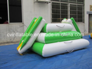 Inflatable Pool Iceberg Float pictures & photos
