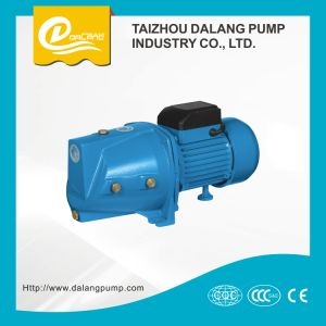 Water Motor Pump 1HP pictures & photos