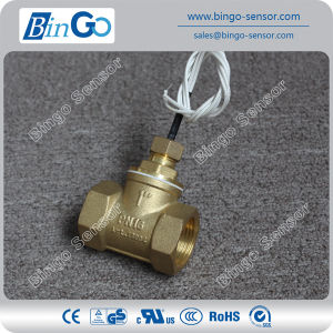 Water Flow Switch for Non-Aggressive Fluid pictures & photos