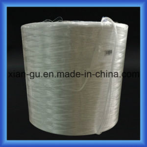 ECR E-Glass Fiber Yarn for PP pictures & photos