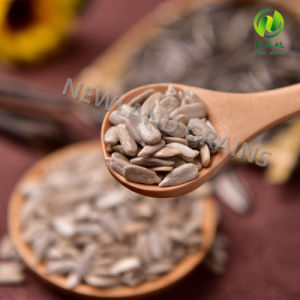 Chinese High Quality Sunflower Seeds Kernels with Organic for Bakery