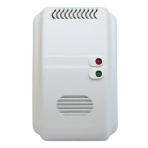 Security Dual Voltage AC/DC Gas Detector pictures & photos