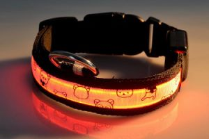 2016 USB LED Flashing Dog Collar for Christmas Promotion and Roadway Safety pictures & photos