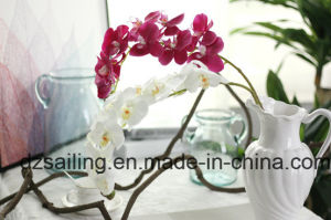 High Quality Orchid Artificial Flower with Hand Feeling Coating (SW18901)