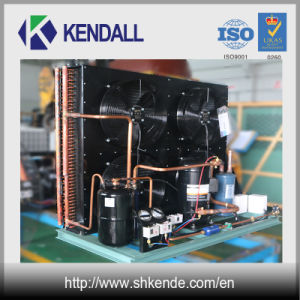 Low Temperature Condensing Unit 8HP with Copeland Compressor pictures & photos