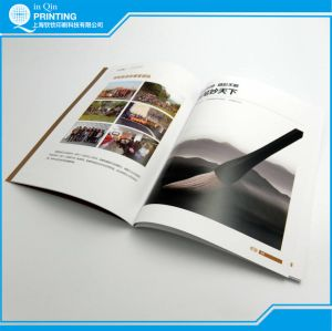 Promotional Catalogue Printing with Die-Cutting pictures & photos
