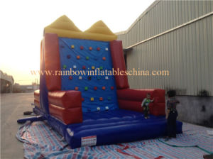 Hot Selling Infltable Climbings&Hook & Loop Wall Games (2 in 1 sports game) pictures & photos