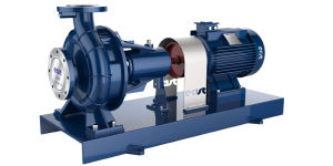 Horizontal Electrical Single Stage Single Suction Pump pictures & photos