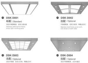 Dsk Sightseeing Elevator with Good Decoration pictures & photos