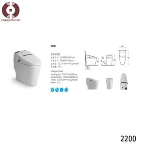 Foshan New Design Intelligent Toilet (2200) pictures & photos
