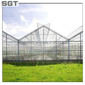 Toughened Glass Laminated Glass for Greenhouse pictures & photos
