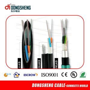 12 Core Indoor FTTH Optic Fiber Cable for Telecom Cable with CE ISO pictures & photos