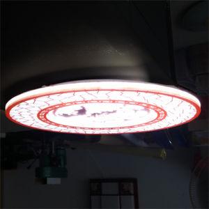 Artistic Fashion LED Light Panel for Ceiling Lighting