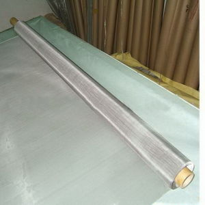 China Best Price Stainless Steel Wire Mesh Screen (SSWMS) pictures & photos