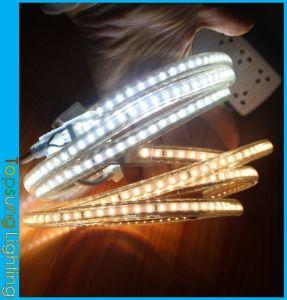 50m Spool 230V AC White Christmas LED Strip Light Outdoor Use 3014 SMD  120LED
