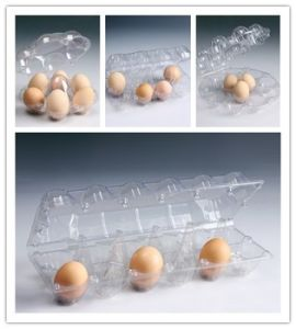 China Factory Transport Chicken Eggs Plastic Tray with Great Price