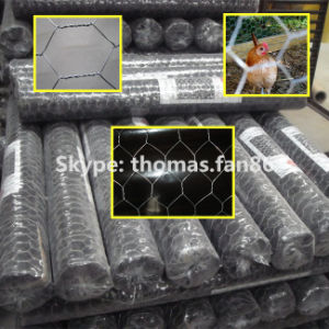 PVC Poultry Netting / Chicken Mesh / Hexagonal Wire Mesh pictures & photos