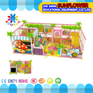 Indoor Playground--Magic Paradise Series, Naughty Castle Series pictures & photos