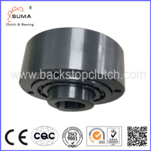 Gfrn45 Special Roller Bearing One-Way Bearing From China pictures & photos