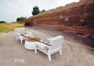 Outdoor PE Rattan Wicker Sofa Set Bp-308b pictures & photos