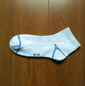Ladies Ankle Sports Cotton Socks