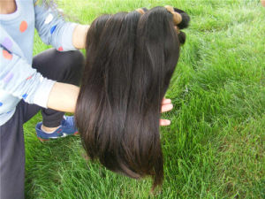Wholesale Unprocessed 100% Brazilian Virgin Remy Human Hair Bulk