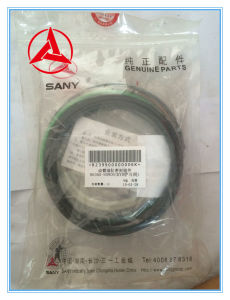 ODM/OEM Sany Excavators Boom Cylinder Seals, Arm Cylinder Seals and Bucket Cylinder Seals for Sy55/60 pictures & photos